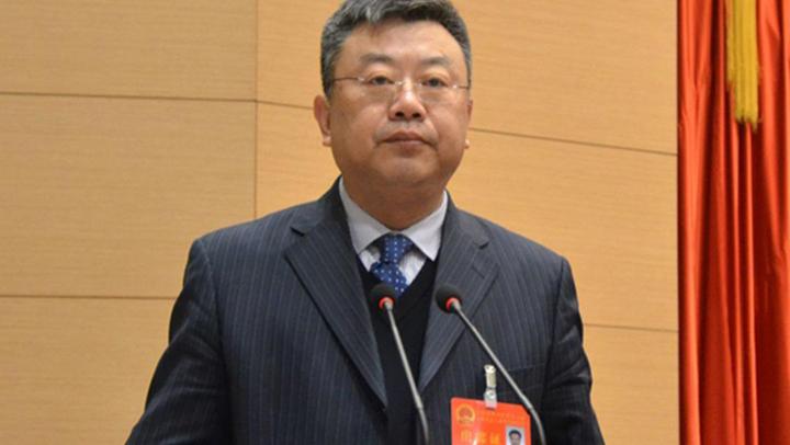 《党代表谈》 赵仲华:坚持协调发展理念 促进津南经济社会持续健康平稳发展