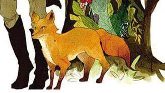 财宝小狐狸